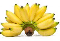 jenis pisang yang dicari banyak orang