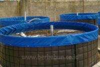 √ Cara Budidaya Ikan Lele Dengan Sistem Bioflok (Panduan Lengkap)